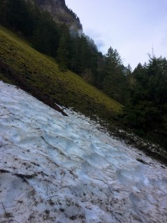 First snowfield