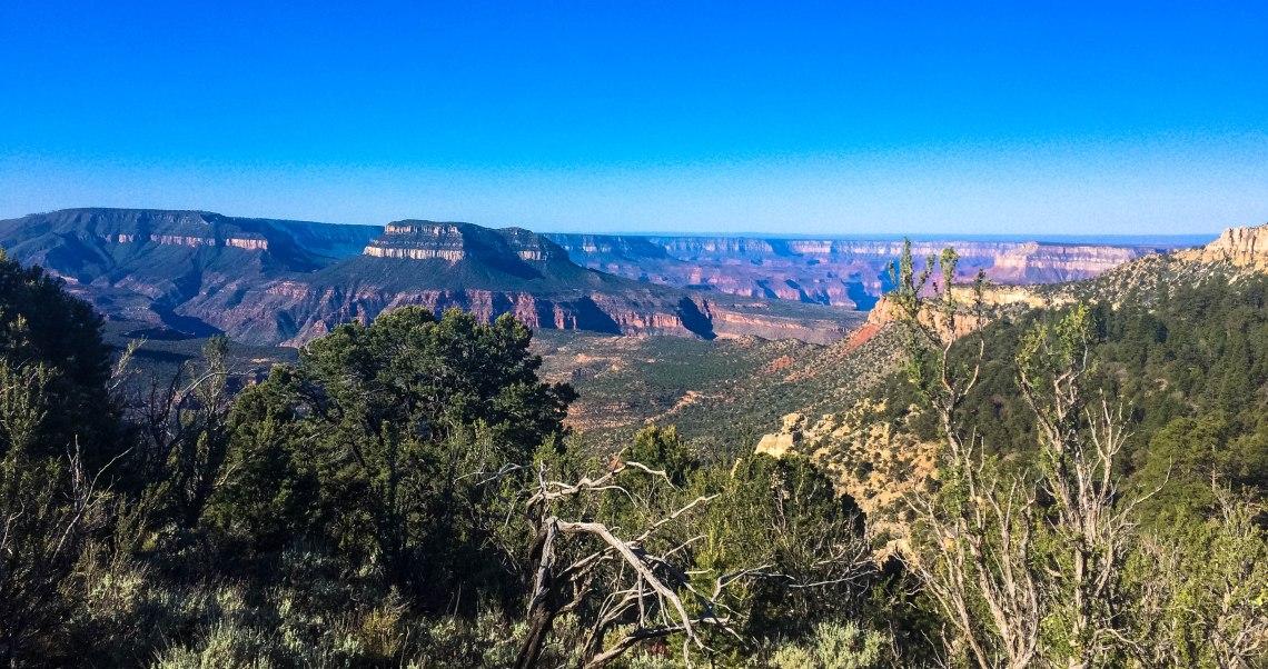 Grand Canyon 50k