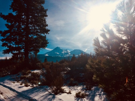 Mt. Shasta trail running