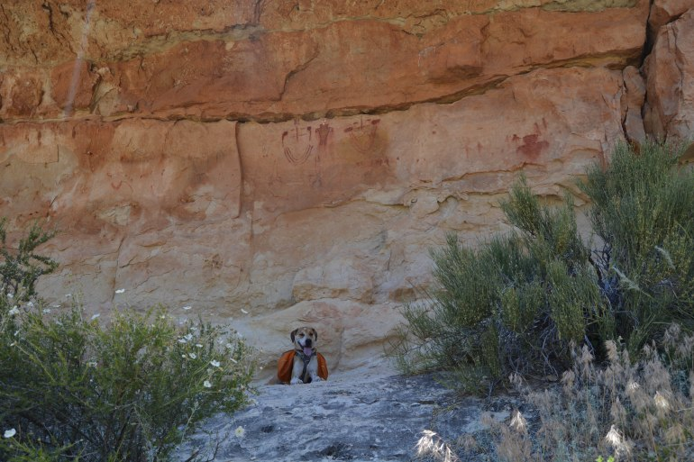 Bruce hanging out with the pictographs